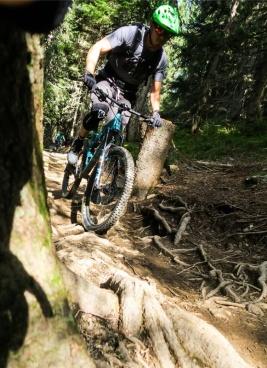 Trail-Lovers, Mountainbike, Mountainbike Guidings, Trails, Mountainbike, Wienerwald